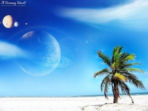 1472-palmier-et-espace-WallFizz1-300x225